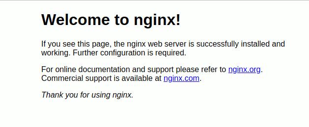 Install Nginx Berhasil